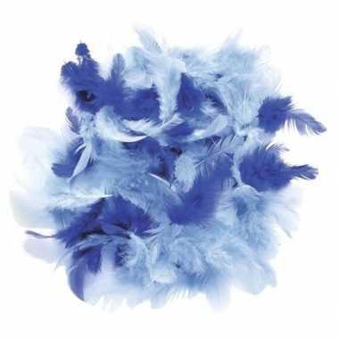 10 gram decoratie sierveren blauw tinten