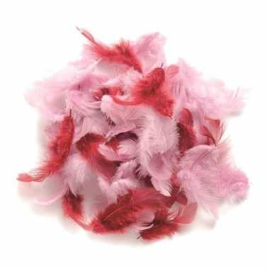 10 gram hobby veren roze tinten