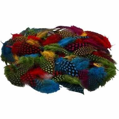 100x gekleurde parelhoen vogel veren
