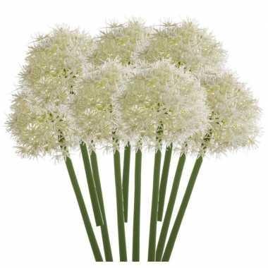 10x allium kunstbloem wit 65 cm