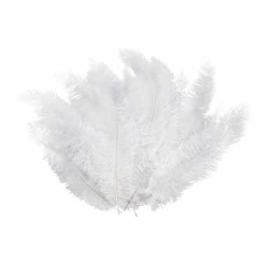 12 grote witte veren