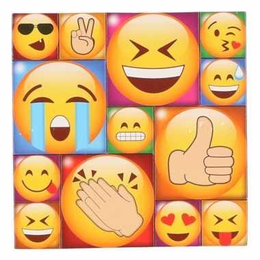 13x koelkast magneten emoji smileys/emoticons type 1