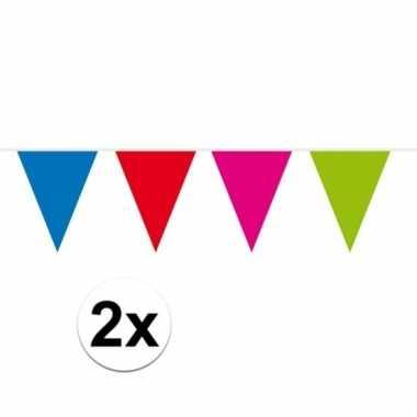 2x gekleurde vlaggenlijn xxl 10 meter
