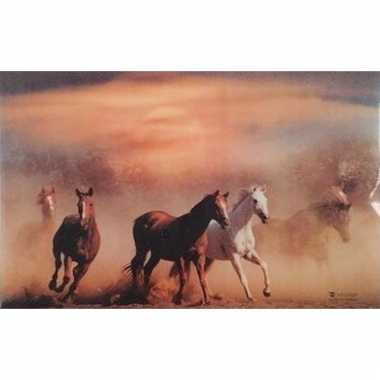 3d dieren placemats paarden type 1