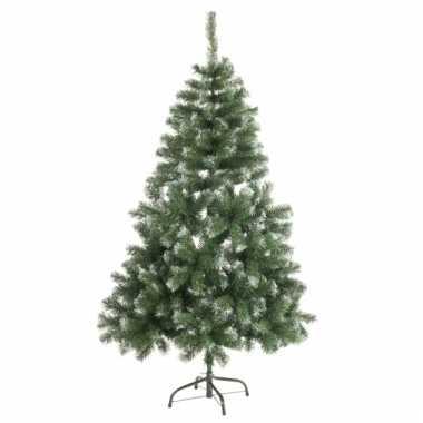 Abies kerstboom met witte takjes