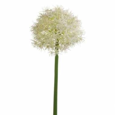 Allium kunstbloem wit 65 cm