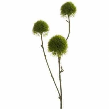 Anjer/dianthus nep tak 58 cm groen