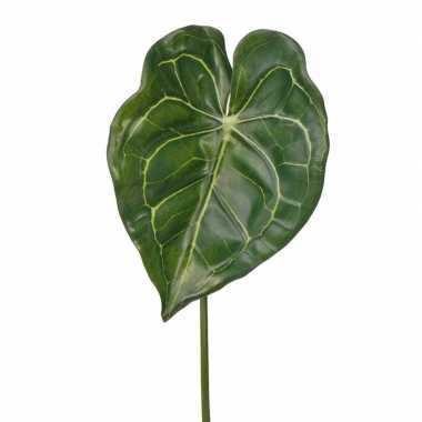 Anthurium neptakje 67 cm groen