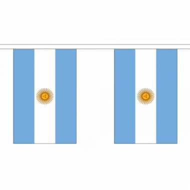 Argentinie vlaggenlijn deluxe
