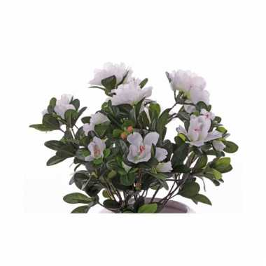 Azelea kunstbloem 2wit 0 cm