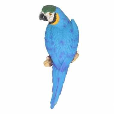 Decoratie beeld blauwe papegaai 30 cm