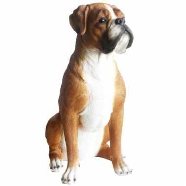Decoratie beeld boxer hond 47 x 41 x 24 cm - Beeld van decoratie ...