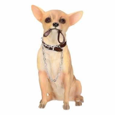 Decoratie beeld chihuahua hond 18 cm