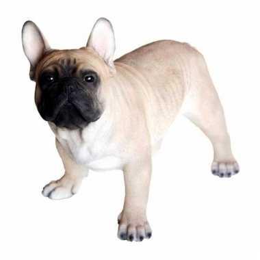 Decoratie beeld franse bulldog hond 35 cm