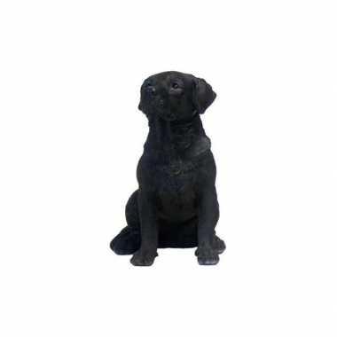Decoratie beeld zwarte labrador hond 21 cm