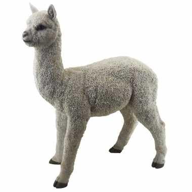 Decoratie dieren beelden alpaca/lama 54 cm