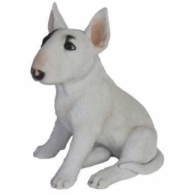 Decoratie dieren honden beeldjes bull terrier 34 cm