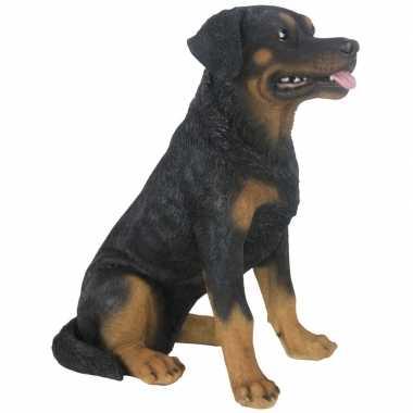 Decoratie dieren honden beeldjes rottweiler 49 cm