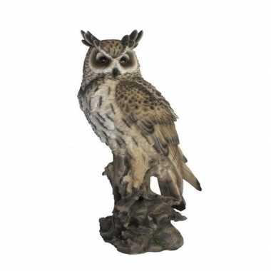 Decoratie dieren vogel beeldjes oehoe uil 53 cm