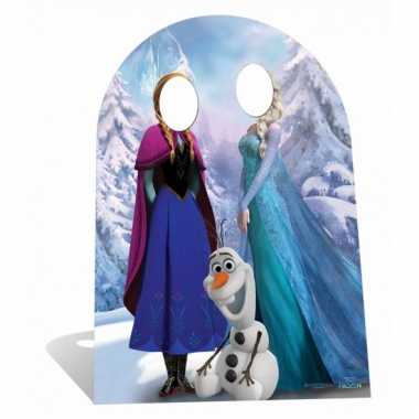 Decoratie fotobord frozen