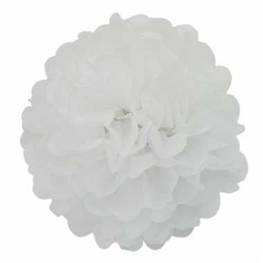 Decoratie pompom wit 25 cm