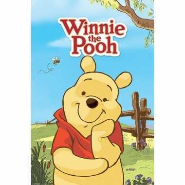 Decoratie poster winnie the pooh 61 x 91.5 cm