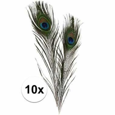 Decoratie veren van een pauw