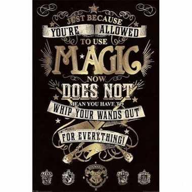 Deurposter harry potter magie 61x91cm