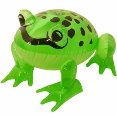 Dieren opblaas speelgoed kikker 40 cm