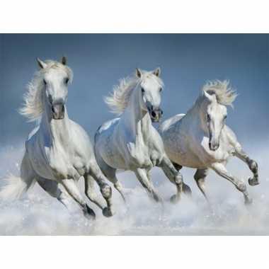 Dieren placemats witte paarden