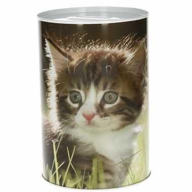 Dieren spaarpot kittens 15 cm type 2