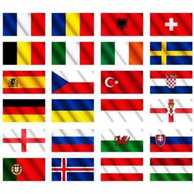 Ek 2016 landen vlaggen pakket