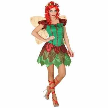 Elfen jurkje voor dames
