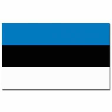 Estse vlag