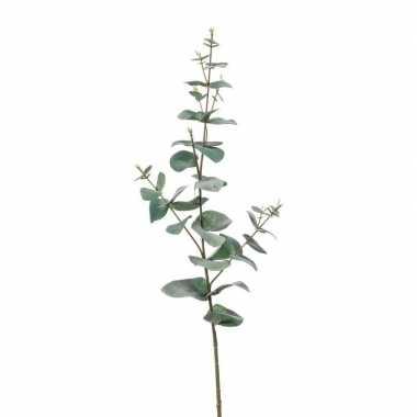 Eucalyptus kunsttak groen 68 cm