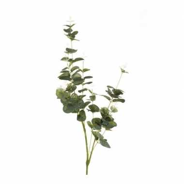 Eucalyptus kunsttak groen 75 cm