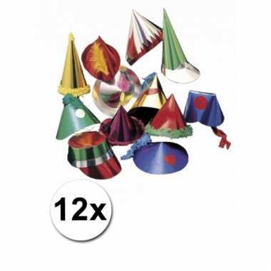 Feesthoedjes in diverse vormen 12 st