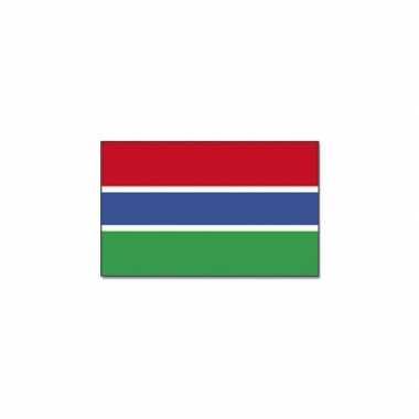 Gambiaanse vlag
