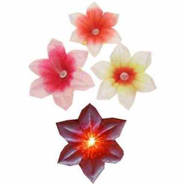Gekleurde fiber bloemen speldjes