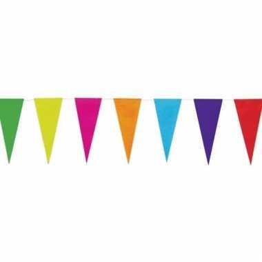 Gekleurde uni vlaggenlijn 10 meter