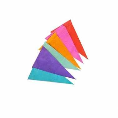 Gekleurde vlaggenlijn 10 meter