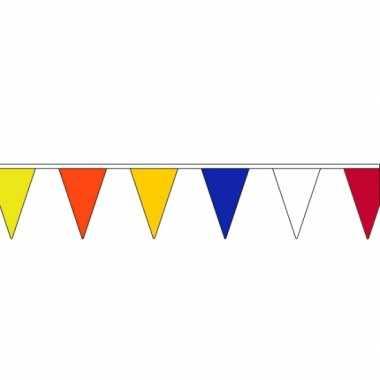 Gekleurde vlaggenlijn 13 meter