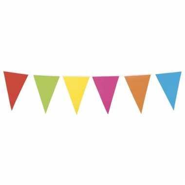 Gekleurde vlaggenlijn xl 10 meter