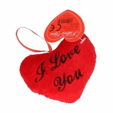 Hartvormig valentijnsdag kussen i love you