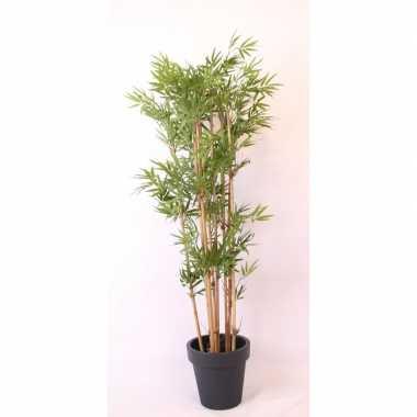 Hawaii bamboe boom in pot antraciet 190 cm