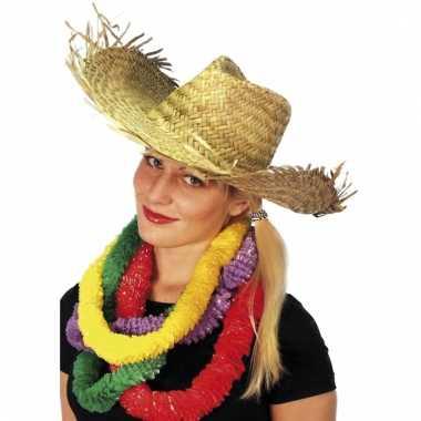 Hawaii strandhoed van stro