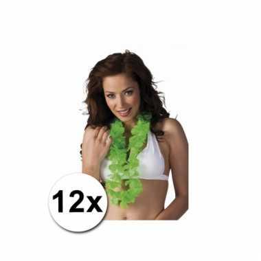 Hawaiikransen groen 12x