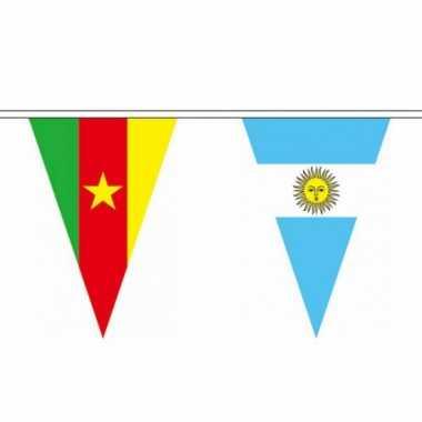 Internationale polyester vlaggenlijn 11 m