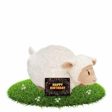 Kado knuffel lammetje/schaapje 26 cm + gratis verjaardagskaart