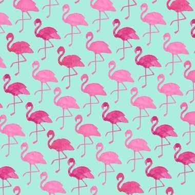 Kadopapier groen met flamingo 70 x 200 cm